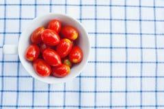 Cup frische Tomaten Stockfotografie
