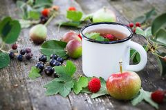 Cup of fruit tea with apples, pears, raspberries and black currant berries on wooden table outdoors. Enameled cup of fruit tea with apples, pears, raspberries Royalty Free Stock Photo