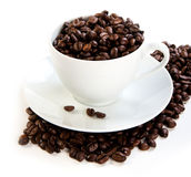 Cup full of coffee beans. White Cup full of coffee beans Royalty Free Stock Photos
