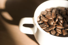 Cup full of coffee beans Royalty Free Stock Image