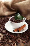 Cup full of coffee beans with leaves and cinnamon on brown wooden background Stock Images