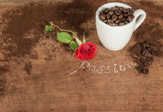 A cup  full of coffee beans with red bud rose on  wooden table. Royalty Free Stock Photos