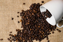 Cup full of coffee beans spilled over cloth background Royalty Free Stock Image