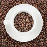 Cup full of coffee beans. White ceramic plate with cup full of roasted coffee beans as a background Stock Image