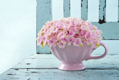 Cup full of pink hydrangea on vintage chair stock photos