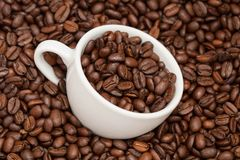 Cup in roasted coffee beans Royalty Free Stock Photography