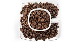 Cup fyllde med kaffebönor Royaltyfria Bilder