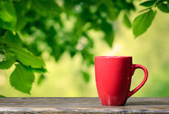 Cup in the garden. Cup cup nature garden table Royalty Free Stock Photo