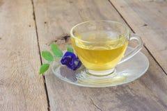 Cup gesunder Tee Lizenzfreie Stockfotografie