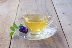 Cup gesunder Tee Lizenzfreie Stockfotos