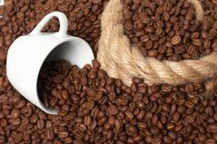 Cup in a grain of coffee Royalty Free Stock Images