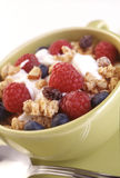 Cup of granola Royalty Free Stock Photos