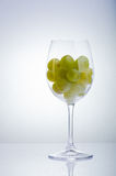 Cup of grapes Stock Photo