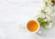 Cup of green tea and branch of blossom cherry on white wooden table. Cup of green tea and  branch of blossom  cherry  on   white  wooden table Royalty Free Stock Images