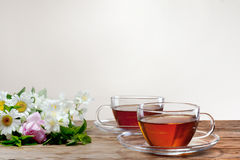 Cup with green tea and fresh herbs Stock Images