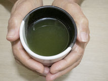 A cup of green tea in the hands. Hands holding a cup of green tea Royalty Free Stock Image