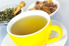 Cup of green tea with herbs Royalty Free Stock Photo