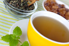 Cup of green tea with herbs and candy Royalty Free Stock Photos