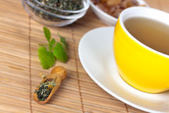 Cup of green tea with herbs and candy Royalty Free Stock Image