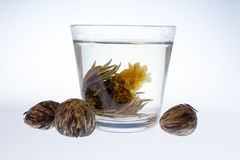 Cup of green tea. In hot water Stock Photo