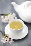 Cup of green tea and japanese cherry blossom Royalty Free Stock Photo