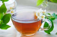 Cup of green tea with jasmine Stock Photography