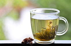 Cup of green tea with jasmine Royalty Free Stock Photography