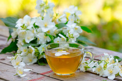 A cup of green tea with jasmine flowers Royalty Free Stock Image