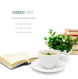 Cup of green tea with mint isolated, close-up, selective focus Royalty Free Stock Photos