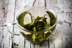 Cup of green tea Royalty Free Stock Image
