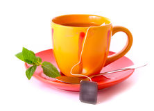 Cup of green tea on the saucer with mint Royalty Free Stock Photos