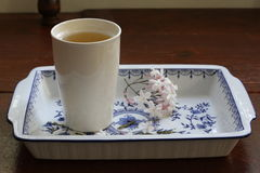 Cup of green tea with sprig of star jasmine on tray Stock Images