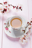 Cup of green tea and spring  flowers Stock Photos