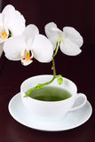 Cup of green tea - tea time Stock Images