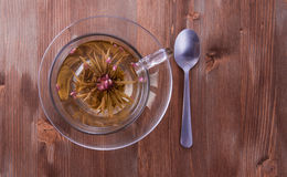 Cup of green tea with teaspoon Stock Photo