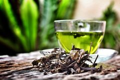Cup with green tea Stock Images