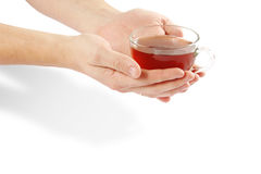 Cup and hands Royalty Free Stock Image