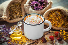 Cup of healthy daisy tea, honey and healing herbs. Royalty Free Stock Photos