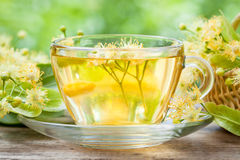Cup of healthy linden tea. Royalty Free Stock Photo