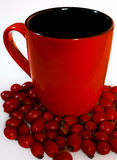 Cup of healthy rosehip Royalty Free Stock Images