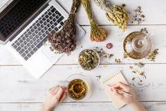 Cup of healthy tea, honey, healing herbs, herbal tea assortment and berries on table. Top view. Herbal medicine. Stock Images