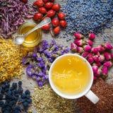 Cup of healthy tea, honey, healing herbs, herbal tea assortment Royalty Free Stock Photos