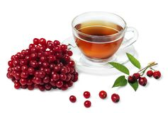 Cup of healthy tea with roze hips and berries of viburnum. Cup of tea with rose hips and berries of viburnum  on white background Stock Image