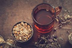 Cup of healthy tea, rustic mortar of daisy herbs, dried thyme on table. Royalty Free Stock Images