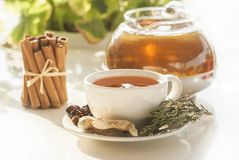Cup of healthy winter tea with herbs and spices. N stock photography