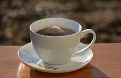 Cup heißer Tee Stockfoto