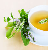 Cup of herbal tea Royalty Free Stock Images