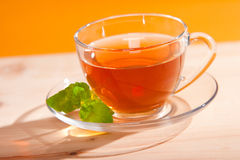 Cup of herbal tea. With mint stock photo