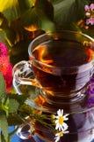 Cup of herbal tea Stock Photos