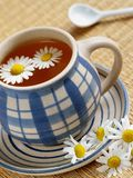Cup of herbal tea. Chamomile and flowers Royalty Free Stock Image